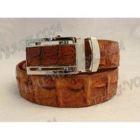 Belt male crocodile leather - TV000681