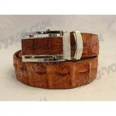 Belt male crocodile leather - TV000681