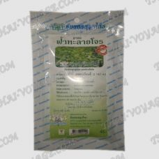 Antiviral herbal tea Andrographis Paniculata Thanyaporn - TV000752