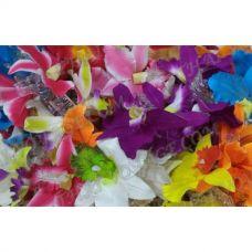 Thai crab hair clip flower Orchid - TV001180