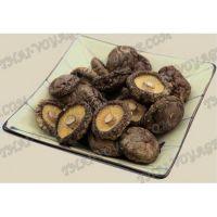 Сушеные грибы Шиитаке - TV001483