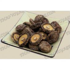 Getrocknete Shiitake-Pilze - TV001483