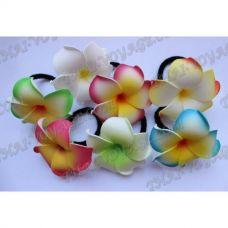 elastico Thai / clip di capelli con il fiore del frangipani - TV001676