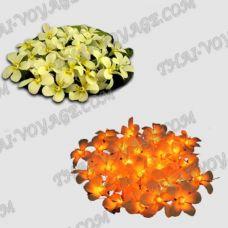 Thai garland flowers frangipani - TV001865